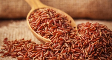 BROWN RICE MILK – A JOURNEY TO THE HEALTHY LIFE